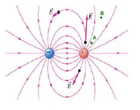 Worksheet. 1r ciclo Campo elctrico Conceptos
